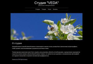 Студия ВЕДА. Фотосъемка и видеопроизводство